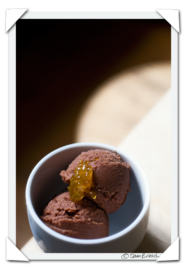 picture photograph image chocolate meyer lemon sorbet 2008 copyright of sam breach http://becksposhnosh.blogspot.com/