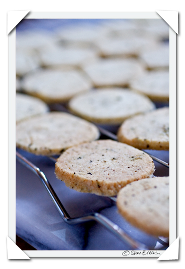 picture photograph image Jasmine Dragon Pearl Tea Cookies: Recipe 2008 copyright of sam breach http://becksposhnosh.blogspot.com/