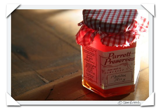 picture photograph medlar jelly  parrett preserves somerset england 2007 copyright of sam breach http://becksposhnosh.blogspot.com/