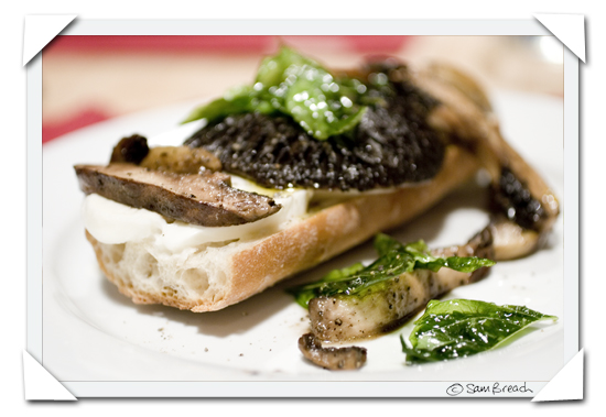 picture photograph image Donna Hay Lemon Mushroom and Mozzarella Toasts 2007 copyright of sam breach http://becksposhnosh.blogspot.com/