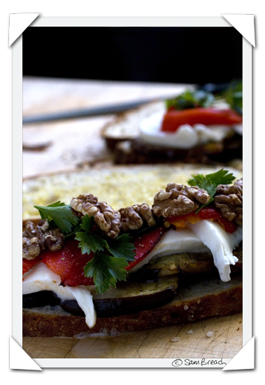 picture photograph image aubergine, pepper mozzarella and walnut sandwich 2007 copyright of sam breach http://becksposhnosh.blogspot.com/