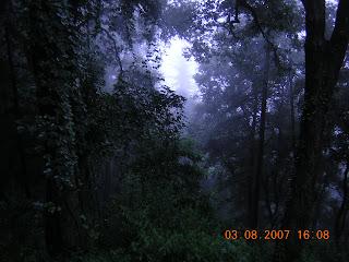 Shimla Gallimaufry: Dard aayega dabe paon