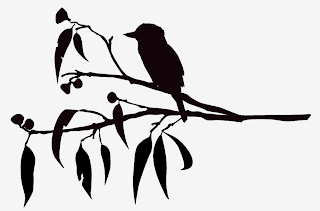 Whatkatydid Kookaburra Sits In The Old Gum Tree