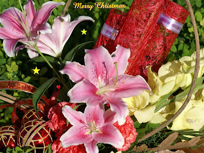 Lovely Christmas wallpapers