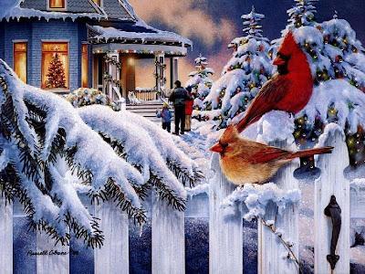 Snowbird Wallpapers