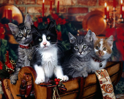 Traditional Christmas Wallpapers