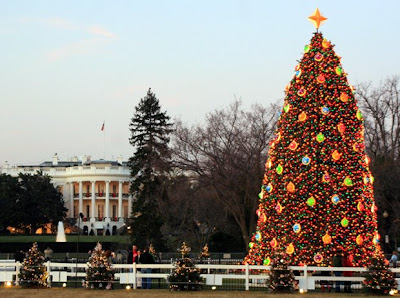 White House Christmas tree Wallpapers