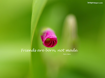 wallpapers of friendship with quotes. friendship quotes backgrounds.