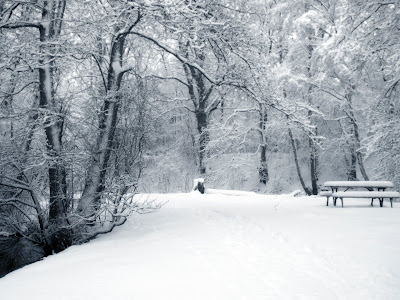 Winter wallapper met bankje in de sneeuw