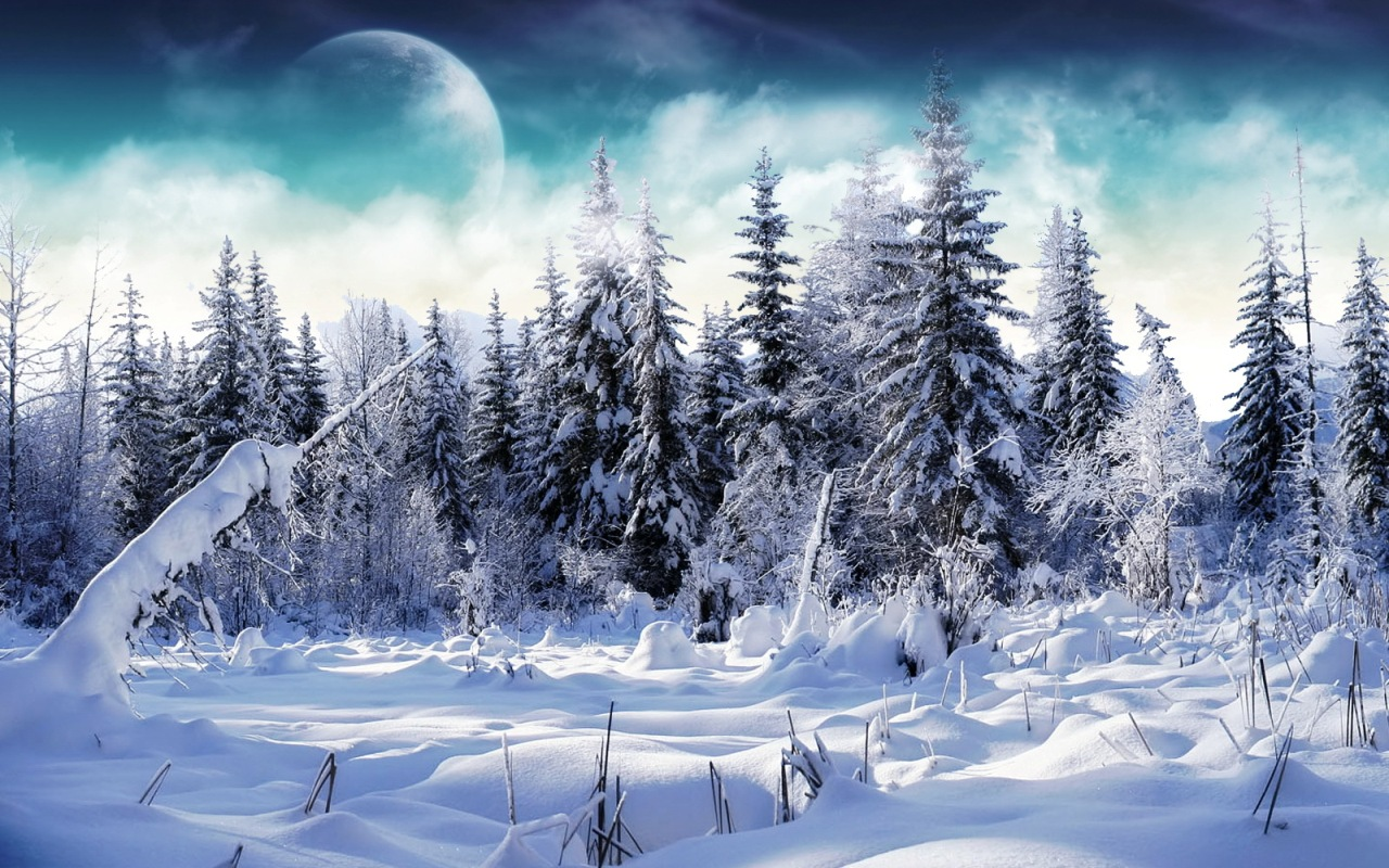 Wallpapers For Desktop Nature Snow