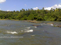 rivers-of-kerala,south-indian-rivers,chalakkudy-river,kerala-river-tributaries,rivers-and-waterfalls-kerala