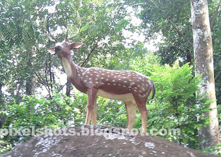 monument of dead deer named krishnan in thenmala deer park,wild life conservation park monuments,deer sculpture with real spotted deer antler,thenmala deer park photos