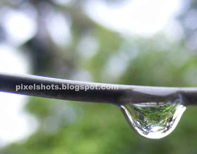 rain drop in steel strand,vella thulli,droplet macros,metala wet in rain