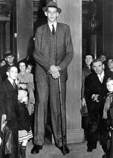 world tallest man ever lived robert wadlow