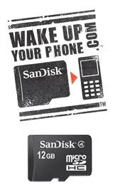 12GB microSDHC SanDisk