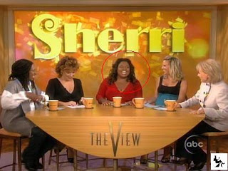 Sherri Shepherd Apologizes for Abortion Controversy