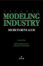 Modeling Industry Secrets Revealed
