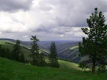 Mountain Scene....