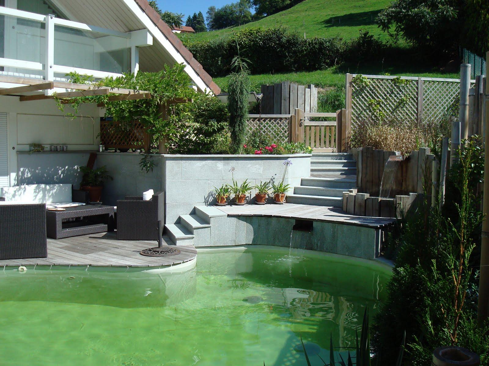 paysagiste et am nagement de jardin thonon et annemasse piscine naturelle. Black Bedroom Furniture Sets. Home Design Ideas