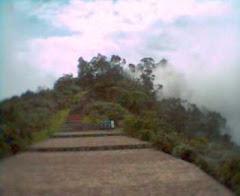 Camino Mirador