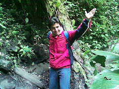 Rober Camino a la Cascada