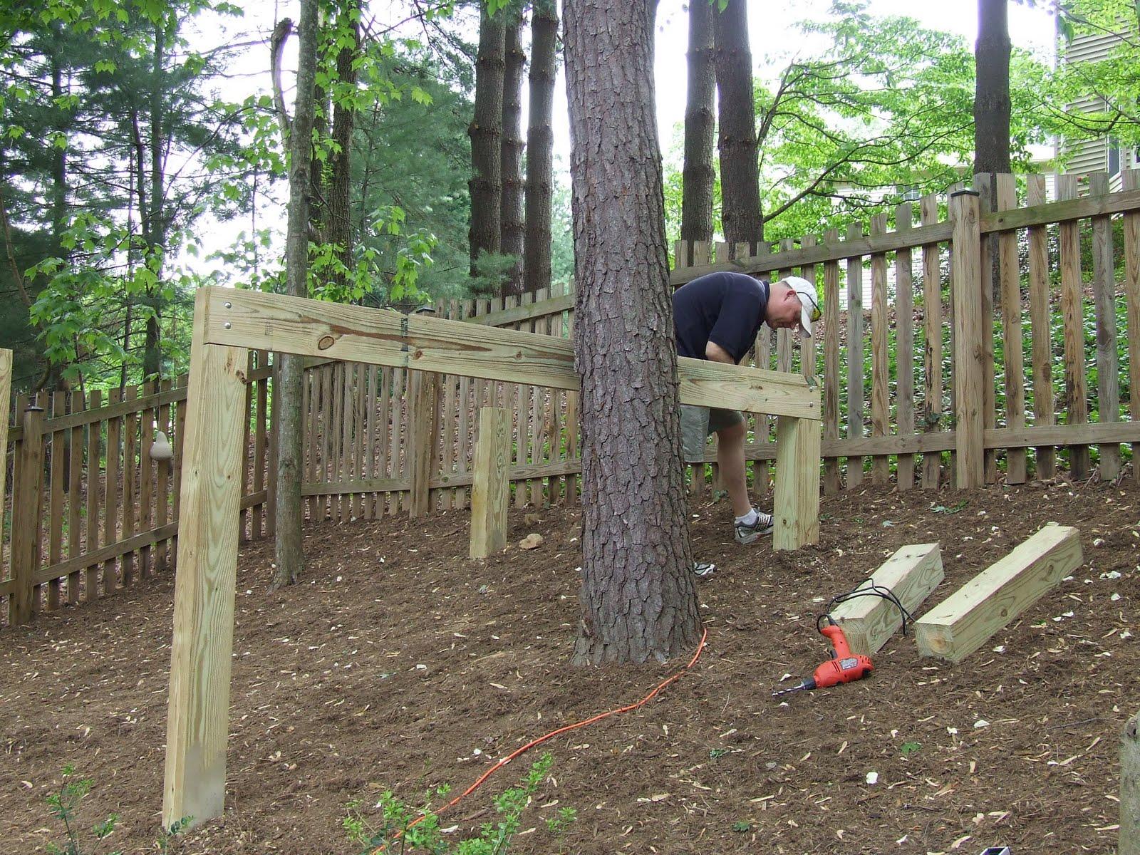 The Jones Tree House Project