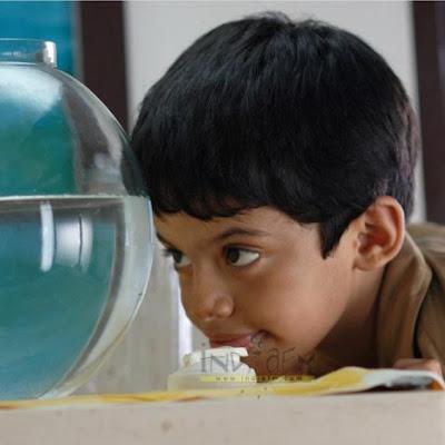 Taare Zameen Par Review | Taare Zameen Par Wallpaper ...