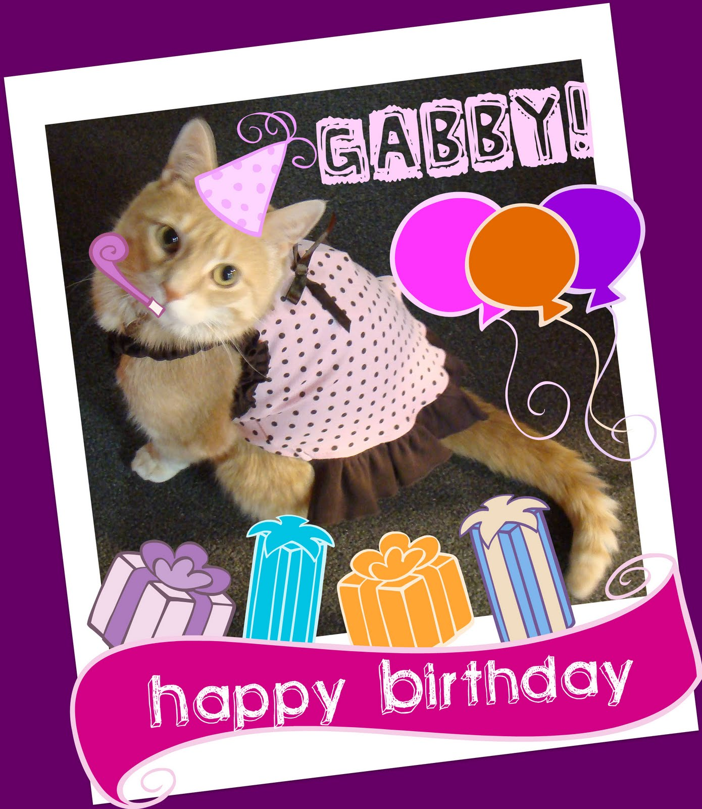 Feline Underground: Happy Birthday, Gabby