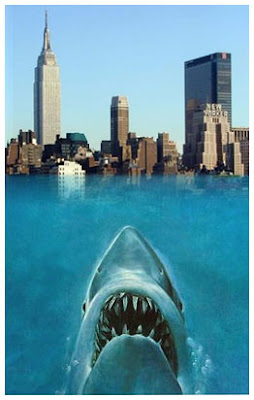 Great white shark occurrence recorded in Fishes of the vicinity of New York city.