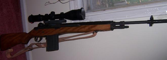 My M1A