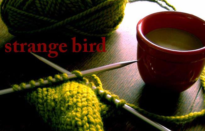 Strange Bird