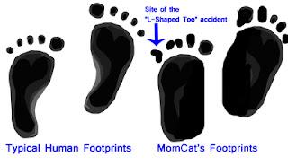 Ryka Running Shoes For Overpronators