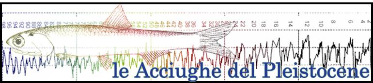 Le Acciughe del Pleistocene