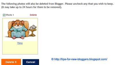 Manage Blogger Image Storage Space
