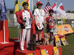 WORLD AGILITY CHAMPIONSHIPS - BELGIUM 2008 - BRONZE MEDAL in STANDARD