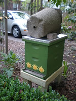 baited, bee, beekeeping, brushy mountain, free bees, hive, swarm, swarm capture, swarm trap,