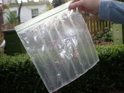 baggie feeder, bee, beekeeping, feeder, hive, Honey B Healthy, lemongrass, oil, spearmint,