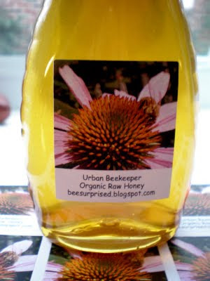 bee, beekeeping, echinacea, honey label, photo, www.colorfulimages.com,