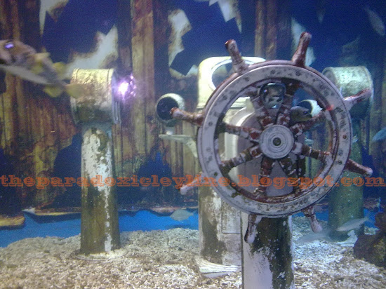Sunken ship in Manila Ocean Park