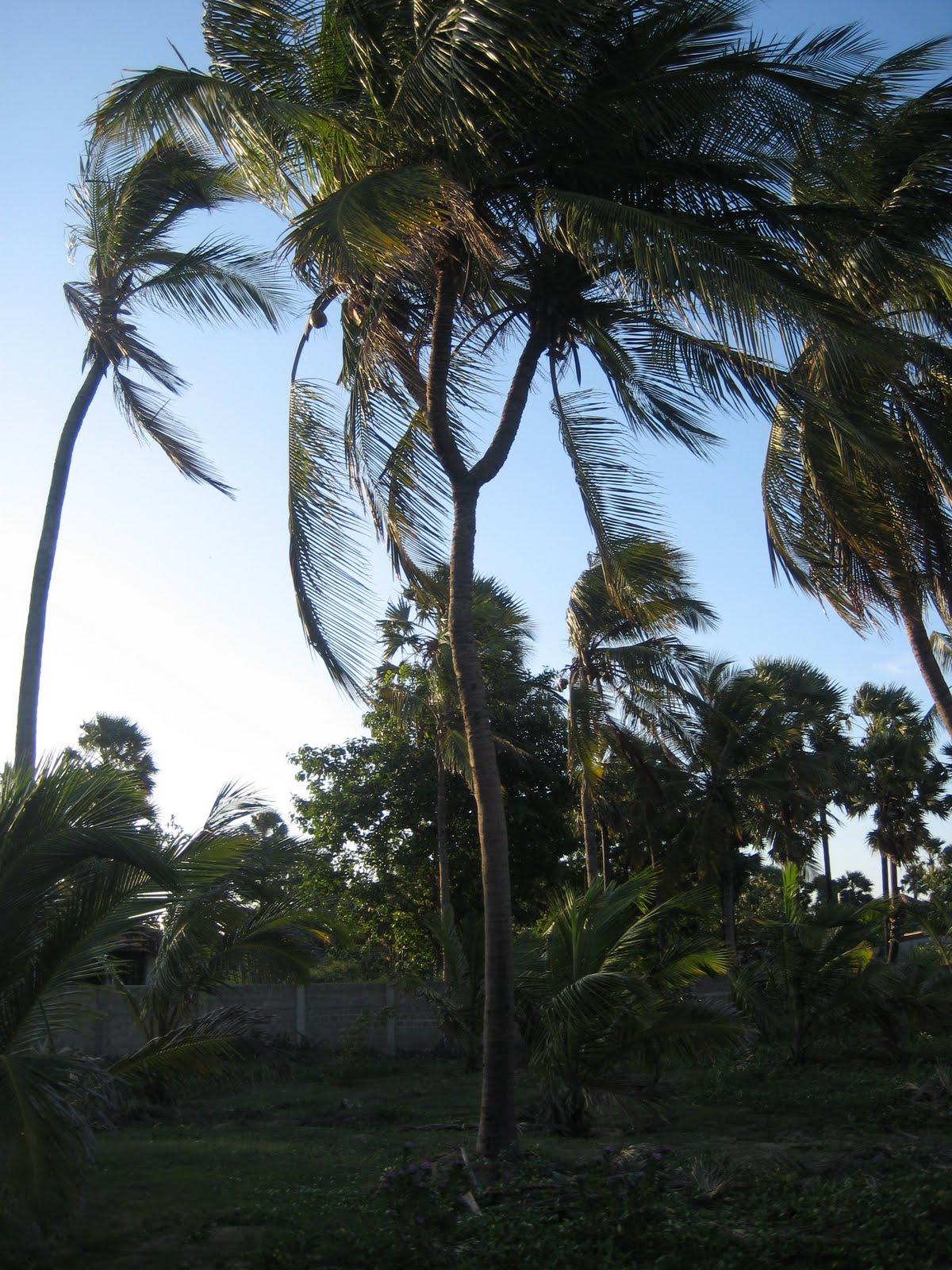 Welcome To Beach Bangal Tourist Rest Inn-1680