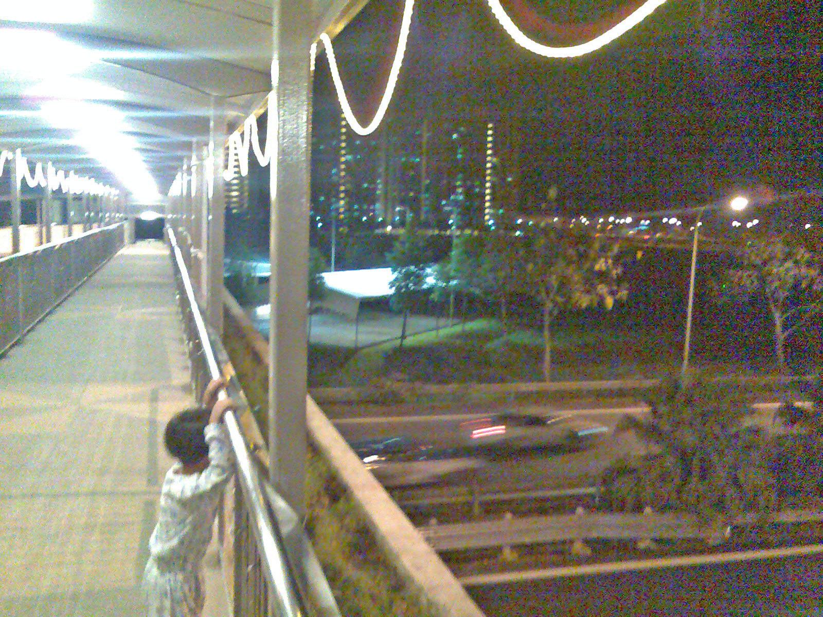 [Bridge44.jpg]