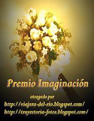 "Premio ""IMAGINACION"""