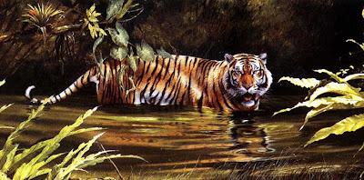 imagenes de tigres en el agua