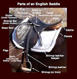 Dressage Mom: Saddle up - Part 3