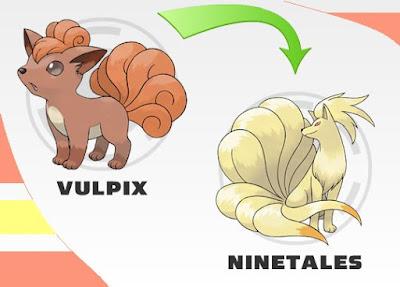 Vulpix Evolution Chart
