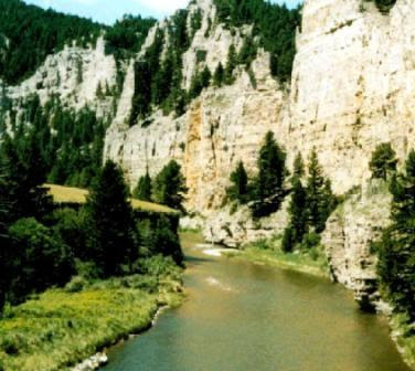 my canyon