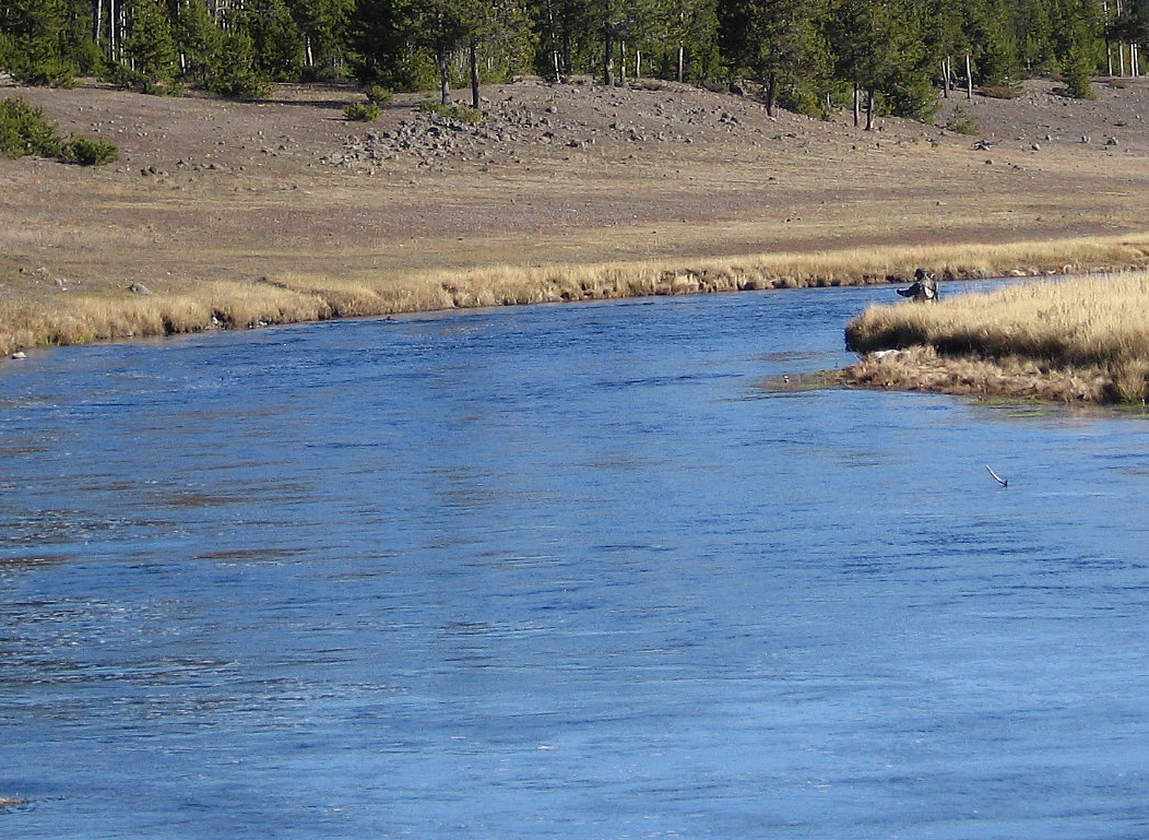 Fly fishing in yellowstone national park published tomorrow for Fishing in yellowstone