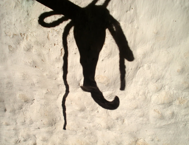 shadow play... the very hard position of not being....
