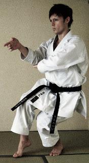 André Bertel's Karate-Do: Hirota 163 Dogi