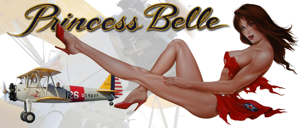 Princess Belle the Best Stearman Example in the World